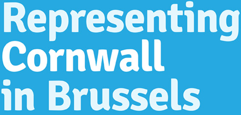 Representing Cornwall in Brussels